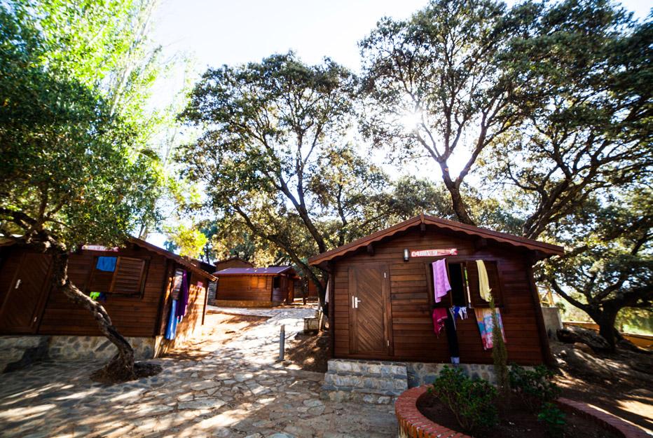 Instalaciones - English Camp
